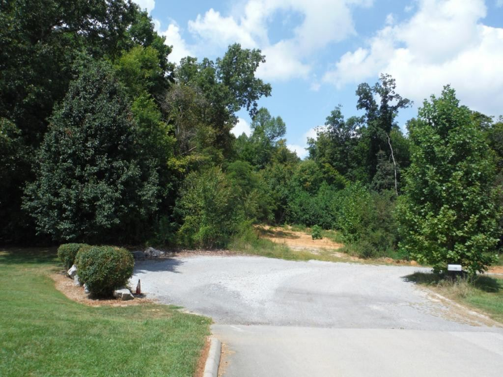 Photo of 0 Cimarron Trail, Afton, TN 37616 (MLS # 396476)
