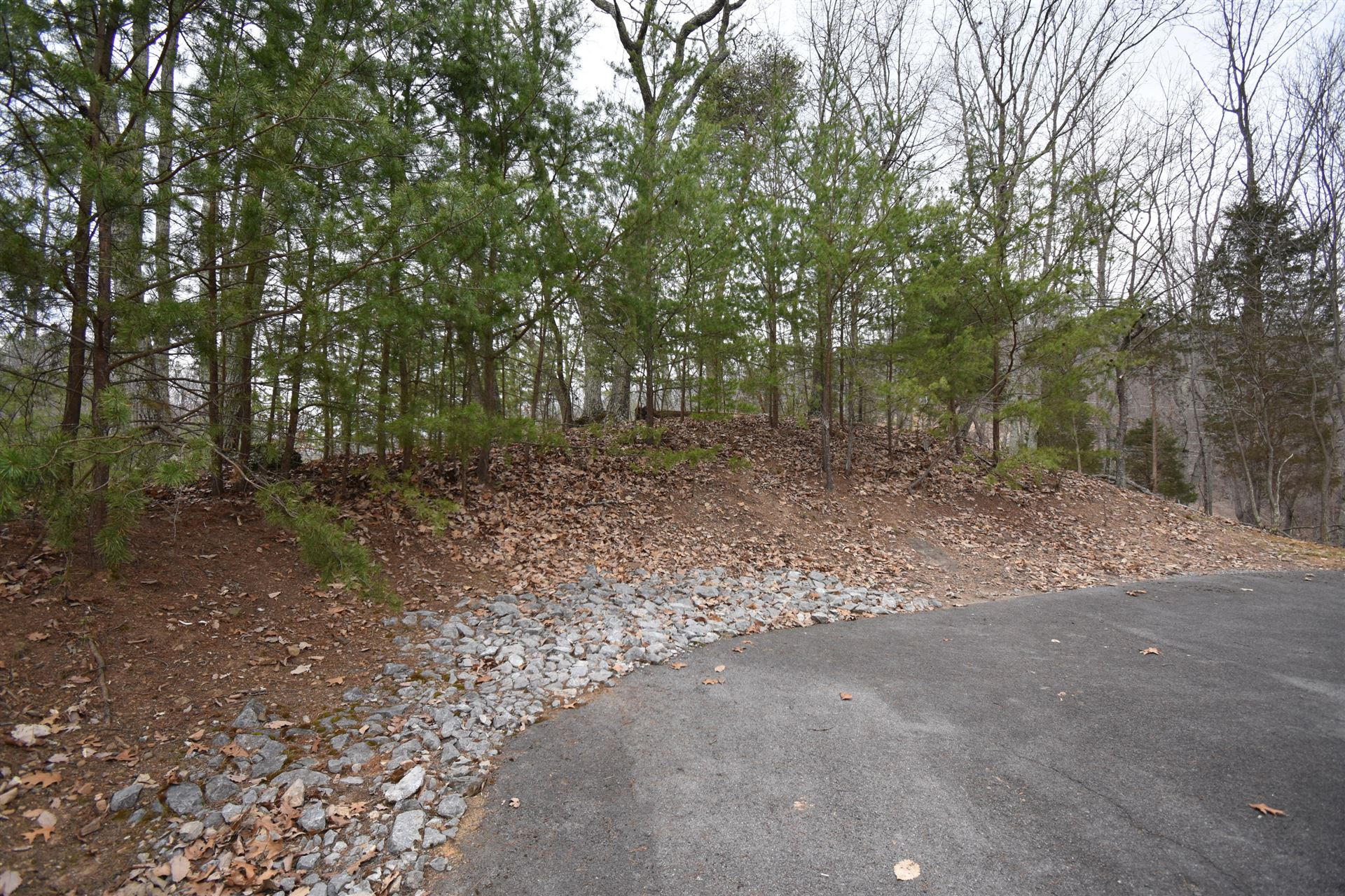 Photo of 325 & 329 Mountain View Dr, Mooresburg, TN 37811 (MLS # 9919479)