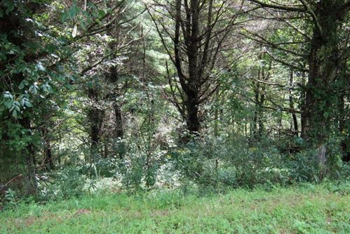 Photo of 000 Laurelwood Lane, Lot #9, Mountain City, TN 37683 (MLS # 9927483)