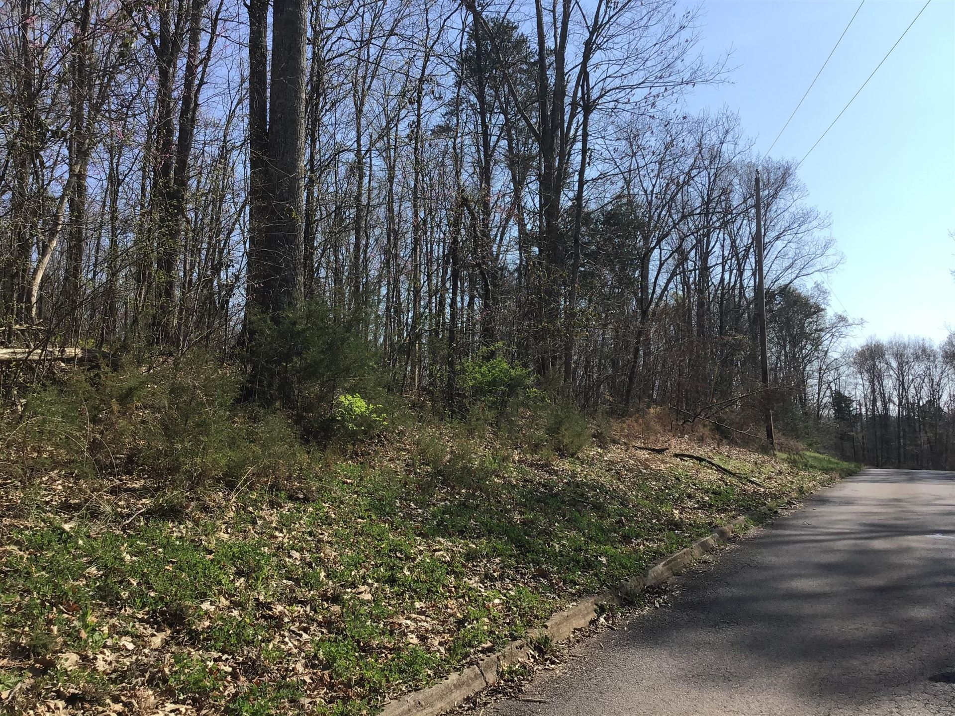 Photo of Lot 64 Secluded River Circle, Parrotsville, TN 37843 (MLS # 288487)