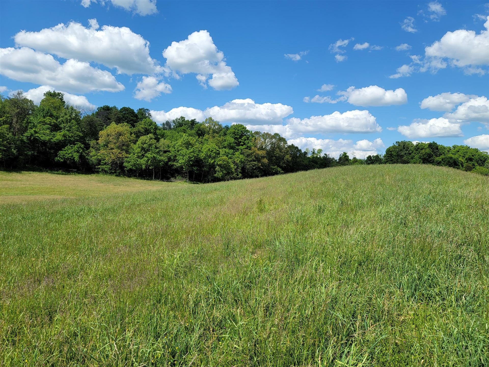 Photo of 0 Whitehouse Road, Greeneville, TN 37745 (MLS # 9922501)
