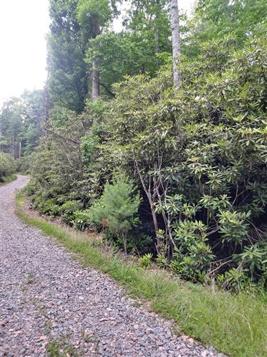 Photo of 0 Doe Mtn Private Drive, Mountain City, TN 37683 (MLS # 9924520)