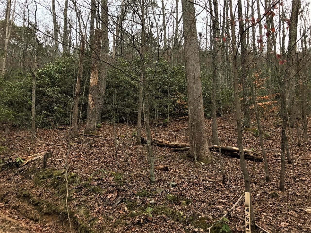 Photo of - Green Forest Road, Cosby, TN 37722 (MLS # 387533)