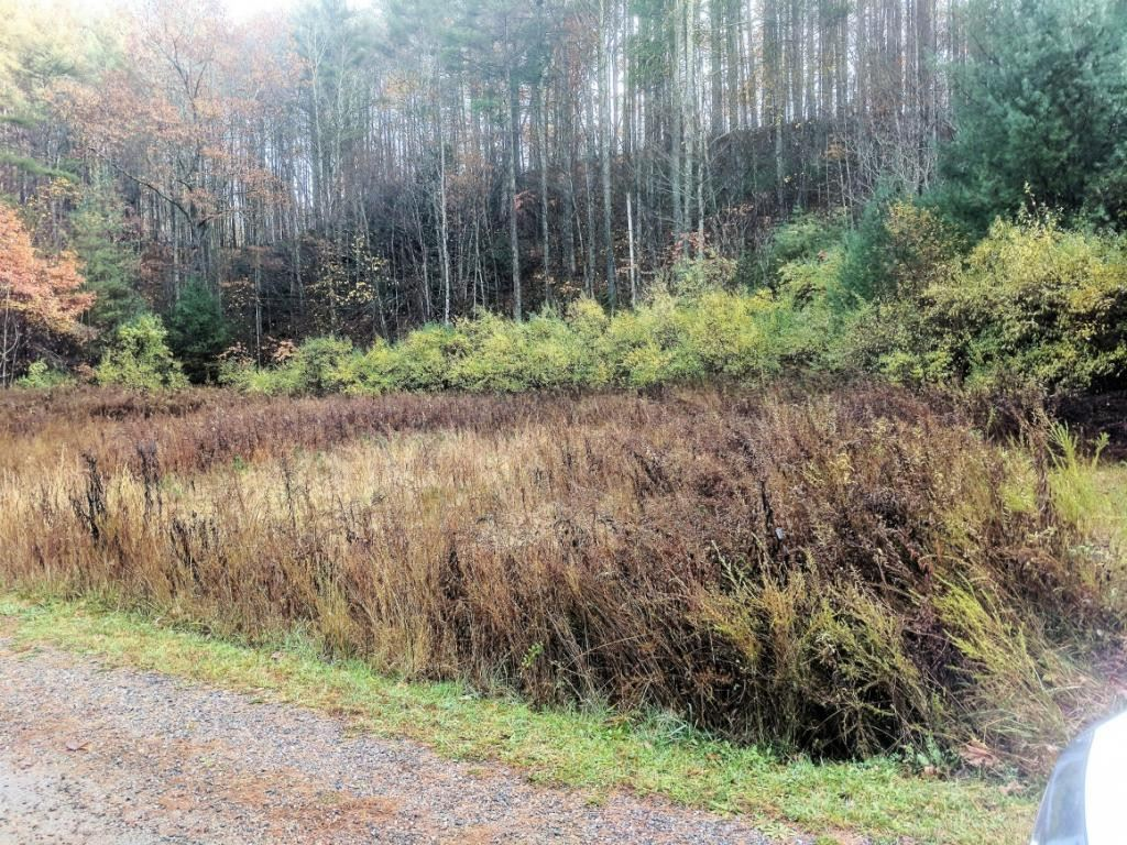 Photo of Tbd Hwy 67, Mountain City, TN 37683 (MLS # 9911542)