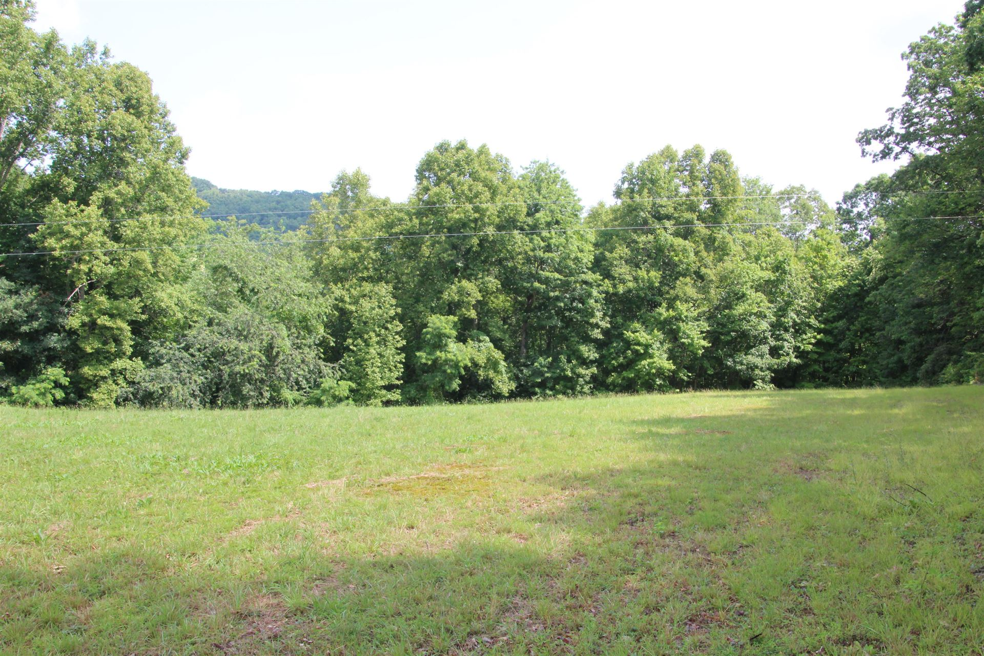 Photo of 369 Dye Leaf Road, Butler, TN 37640 (MLS # 9911547)