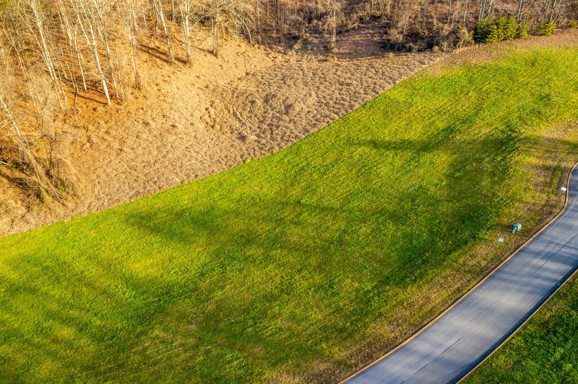 Photo of Lot 55 Cow Poke Lane, Rutledge, TN 37861 (MLS # 9920558)