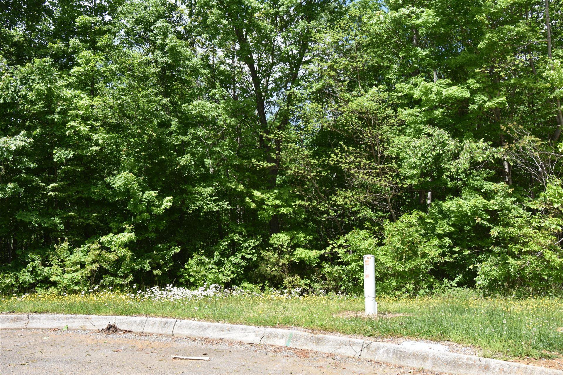 Photo of 440 Lynchburg Lane, Surgoinsville, TN 37873 (MLS # 9922614)