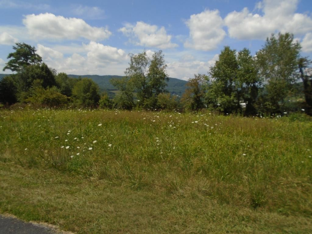 Photo for 00 Sage Valley Drive, Mountain City, TN 37683 (MLS # 425616)
