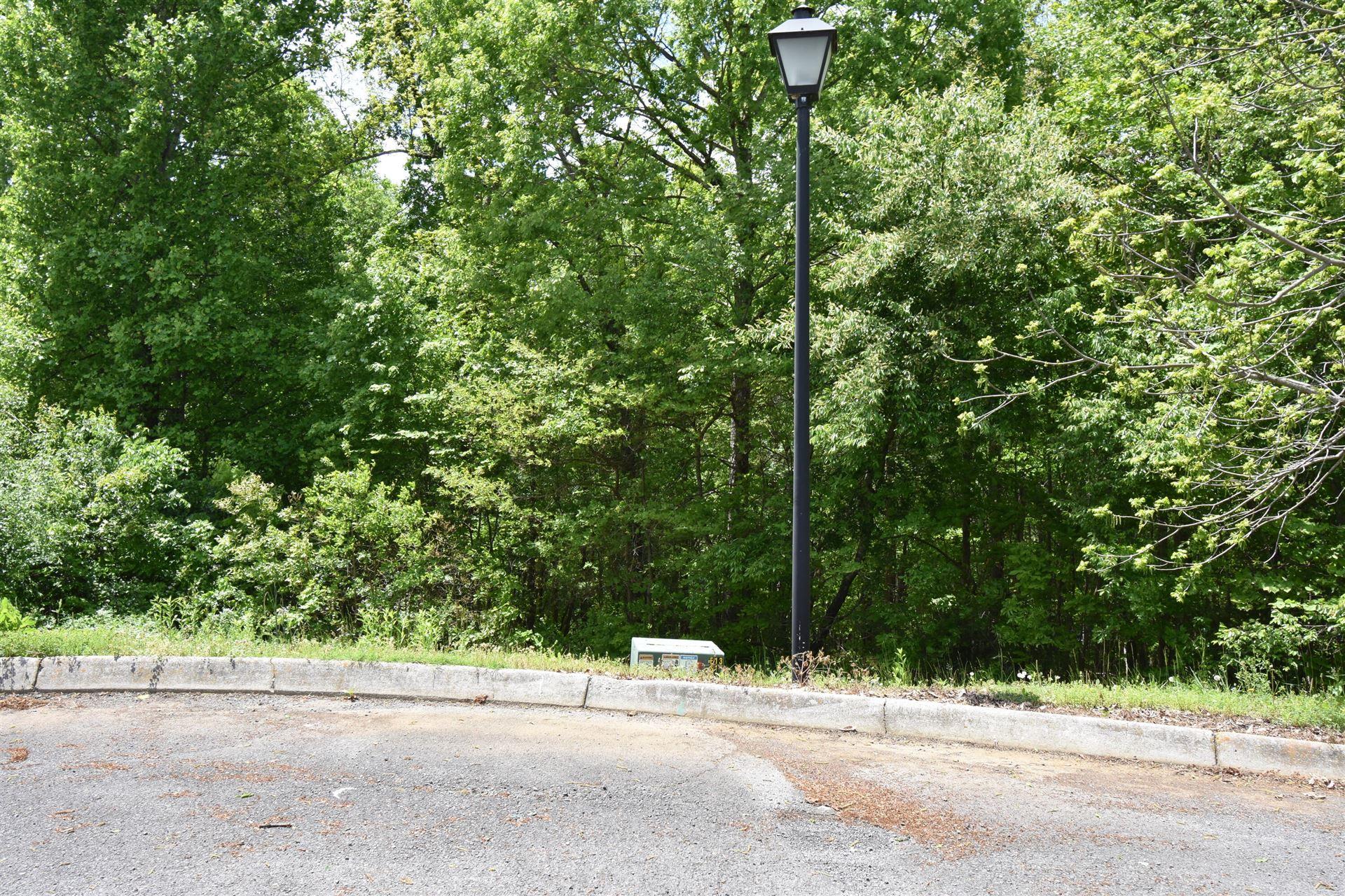 Photo of 446 Lynchburg Lane, Surgoinsville, TN 37873 (MLS # 9922616)