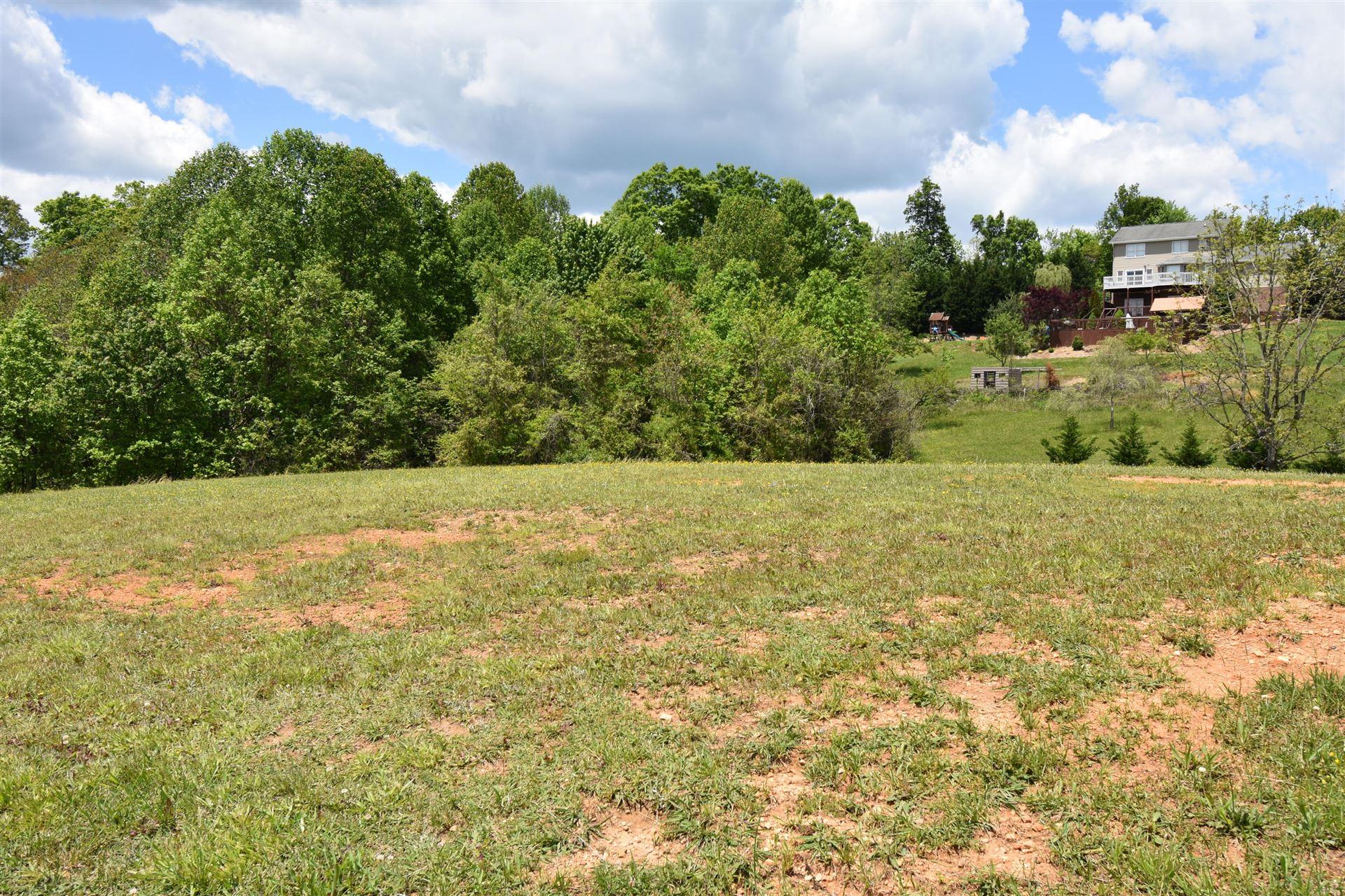 Photo of 510 Conner Lyons Drive, Surgoinsville, TN 37873 (MLS # 9922619)