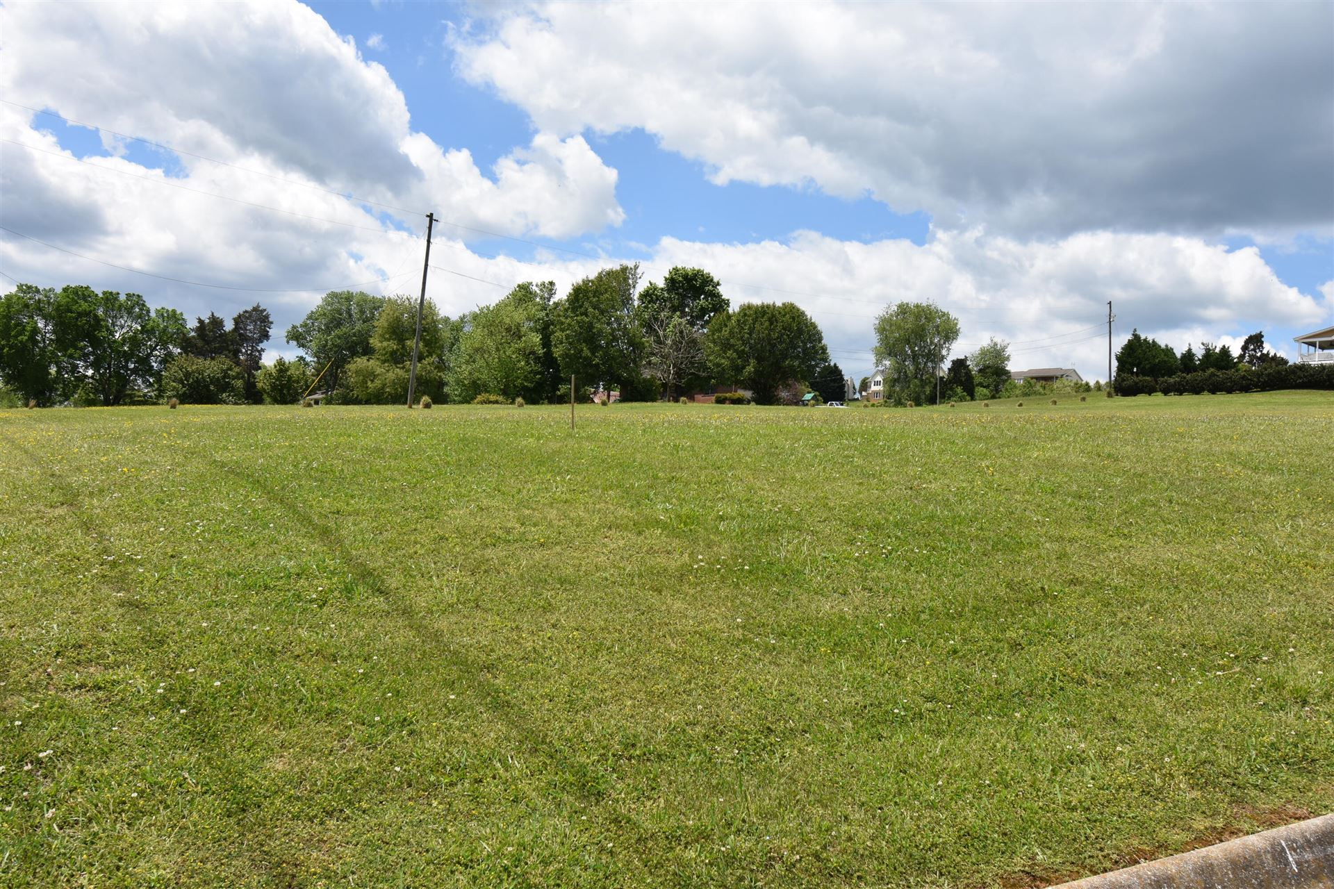 Photo of 103 Richmond Avenue, Surgoinsville, TN 37873 (MLS # 9922628)