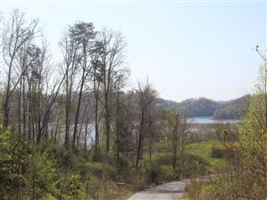 Photo of Lot 48 Bayside Boulevard, Bean Station, TN 37708 (MLS # 405629)