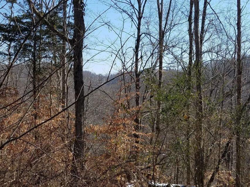 Photo of 0 Big Springs Road, Kyles Ford, TN 37765 (MLS # 9919630)