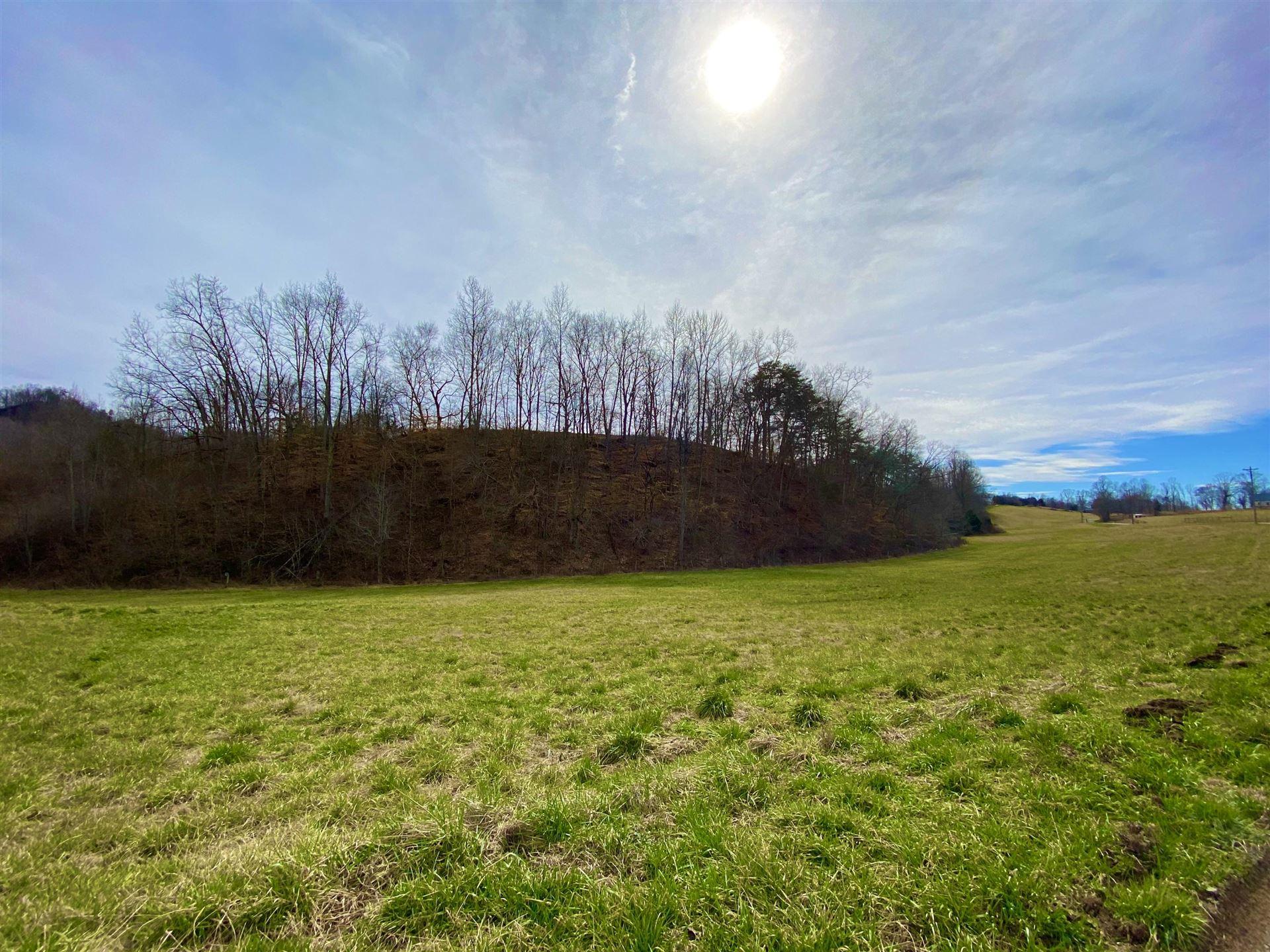 Photo of 889 Caney Valley Loop, Surgoinsville, TN 37873 (MLS # 9919631)
