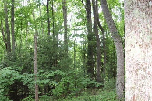 Tiny photo for 000 Dr. Taylor Ln, Mountain City, TN 37683 (MLS # 9924642)