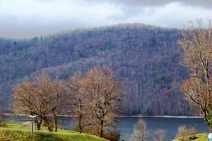 Photo for 000 Harbor View, Lot #33, Butler, TN 37640 (MLS # 9918643)