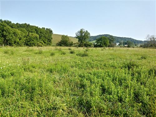 Tiny photo for Tbd Highway 91, Mountain City, TN 37683 (MLS # 9928649)