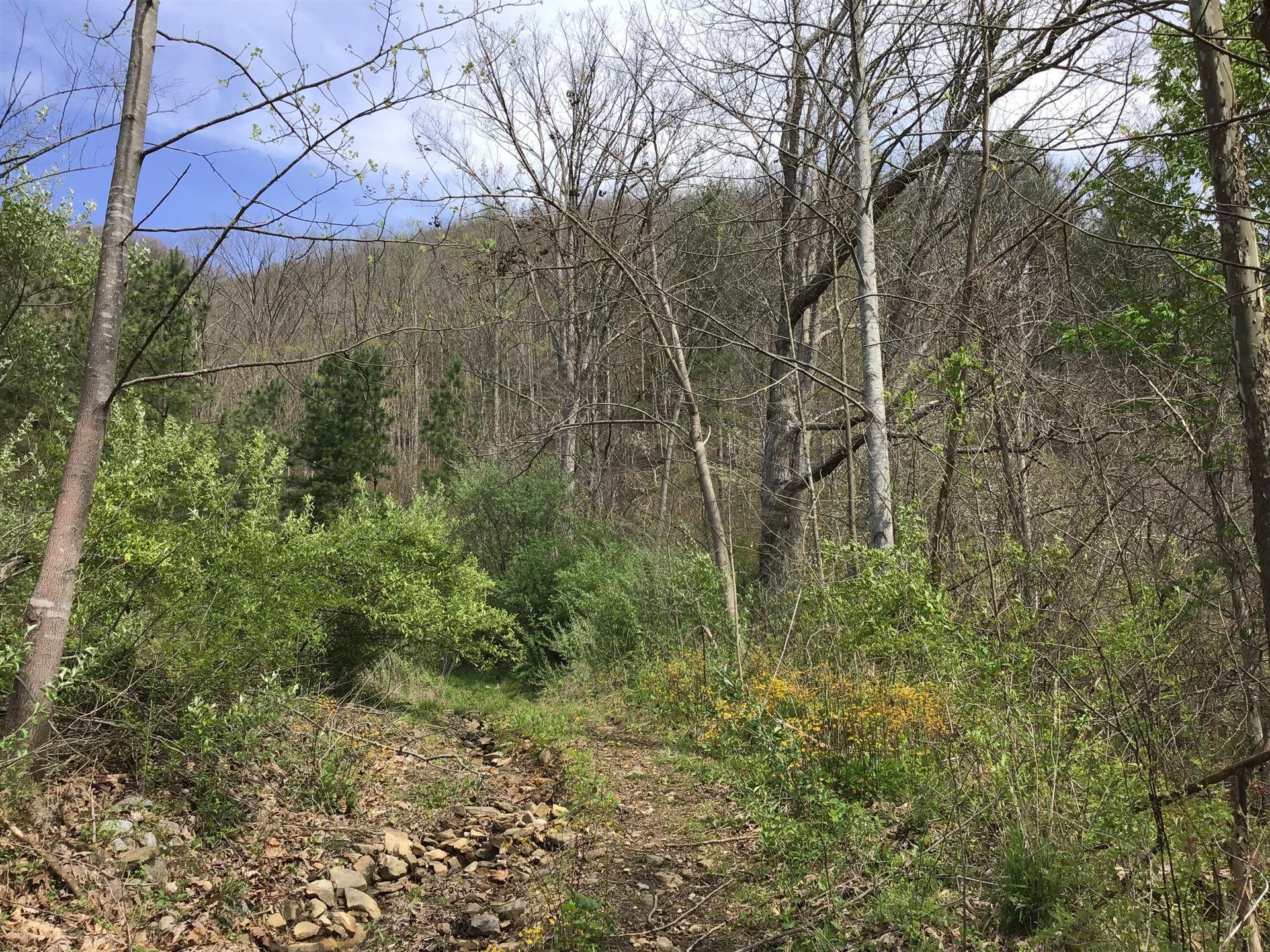 Photo of Tbd Slate Creek, Vansant, VA 24656 (MLS # 9908650)