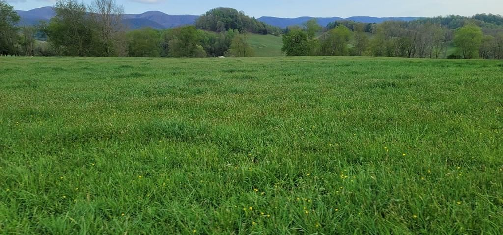 Photo of Tbd Red Stone Road, Chilhowie, VA 24319 (MLS # 9921650)