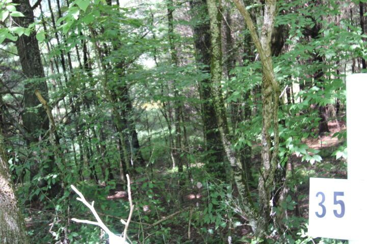 Photo for 000 Laurelwood Drive, Lot #35, Mountain City, TN 37683 (MLS # 9927673)