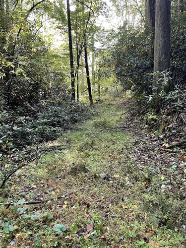 Photo of 00 Waters Road Road, Mountain City, TN 37683 (MLS # 9929677)