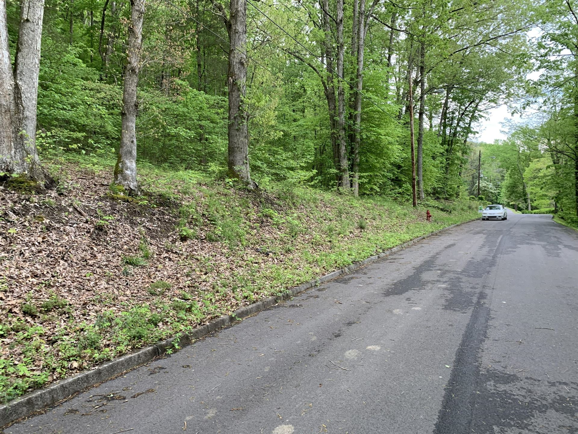 Photo of Tbd Havenmore Drive, Kingsport, TN 37663 (MLS # 9907686)