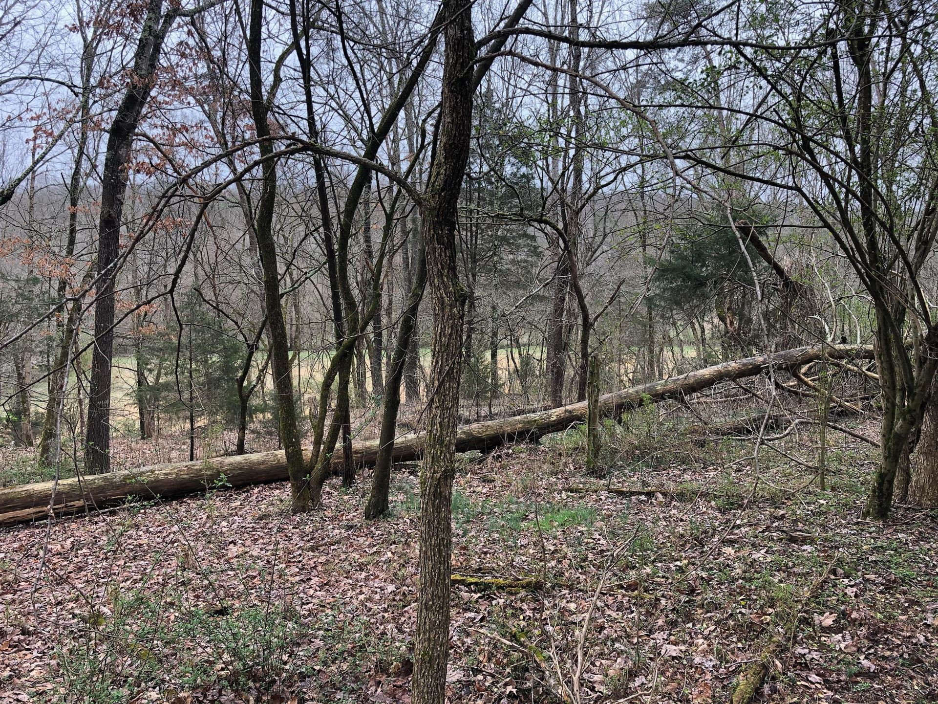 Photo of 00 Old Asheville Hwy, Greeneville, TN 37743 (MLS # 9912691)