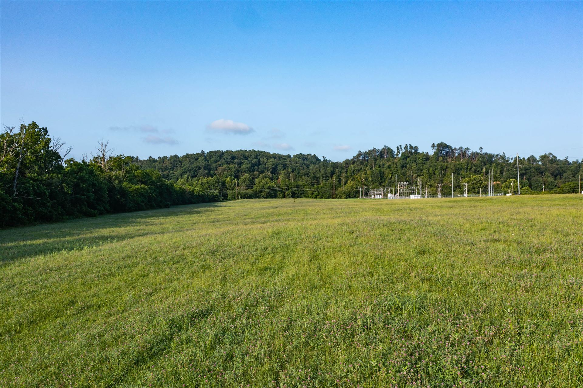 Photo of 0 Justice Road, Afton, TN 37616 (MLS # 9925699)