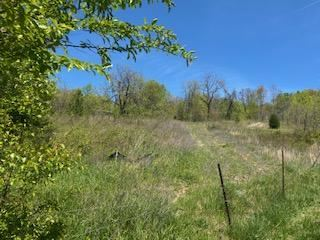 Photo of 3508 Forest View Road, Kingsport, TN 37660 (MLS # 9907708)