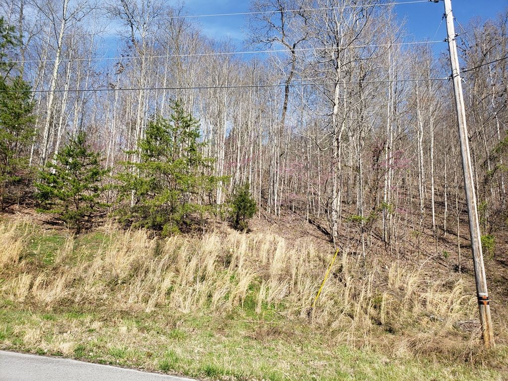 Photo of Lot 576 Whistle Valley Road, New Tazewell, TN 37825 (MLS # 9910710)