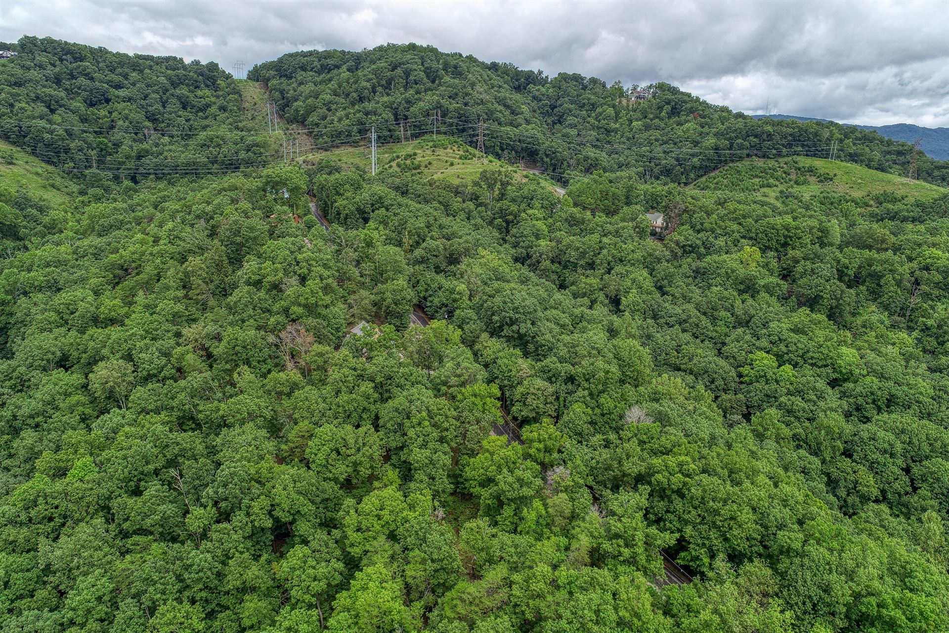 Photo of 648 & 627 Lakeview Drive, Mooresburg, TN 37811 (MLS # 9925756)