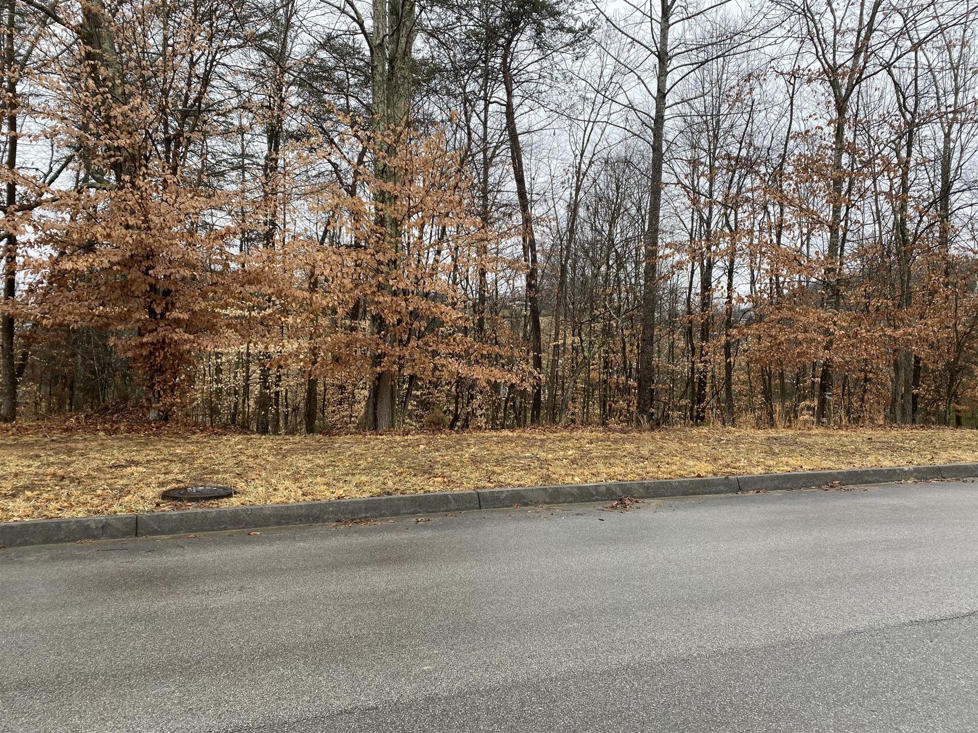 Photo of 2011 Scenic Pointe Place, Church Hill, TN 37642 (MLS # 9925757)