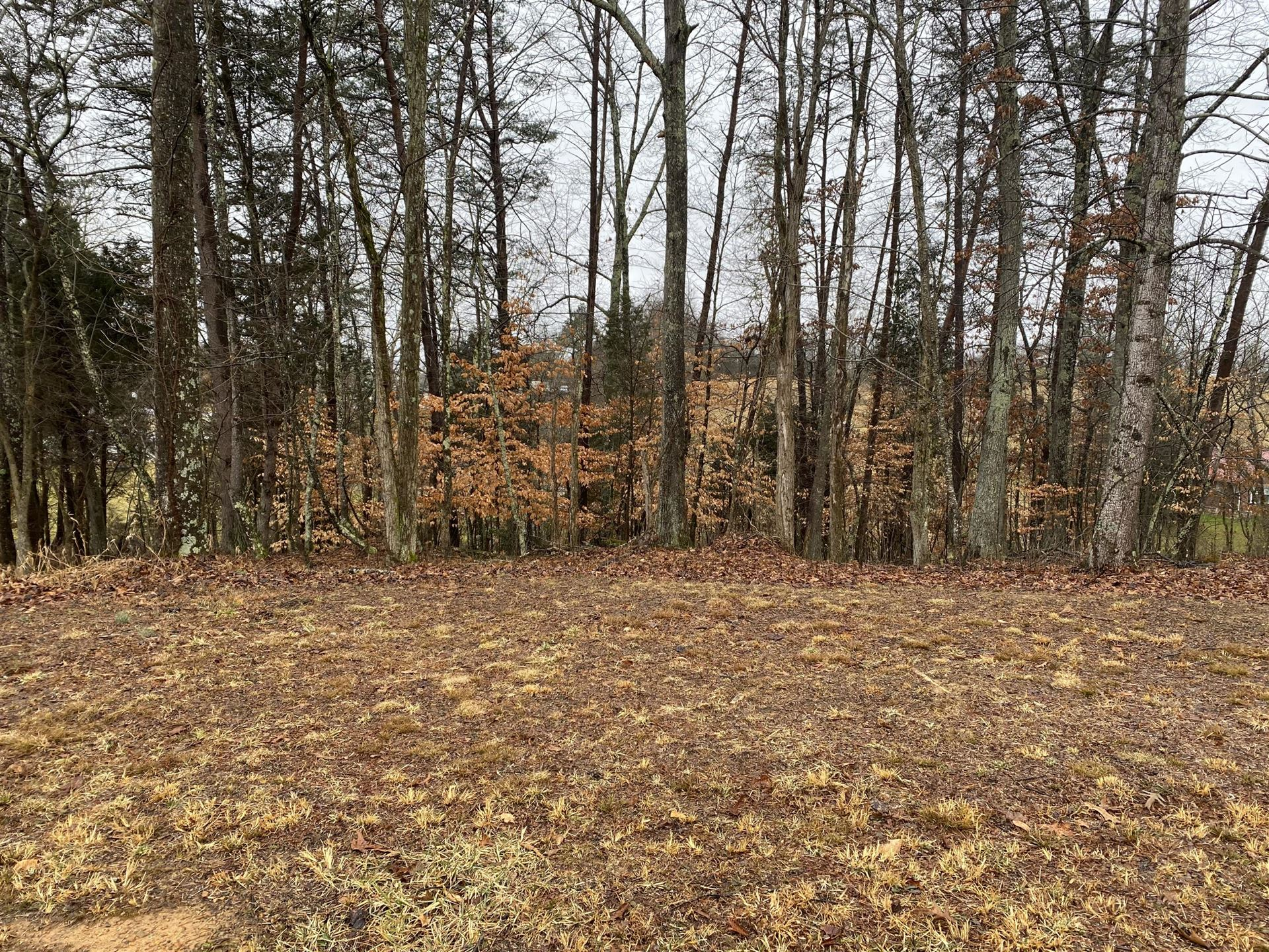 Photo of 2029 Scenic Pointe Place, Church Hill, TN 37642 (MLS # 9925759)