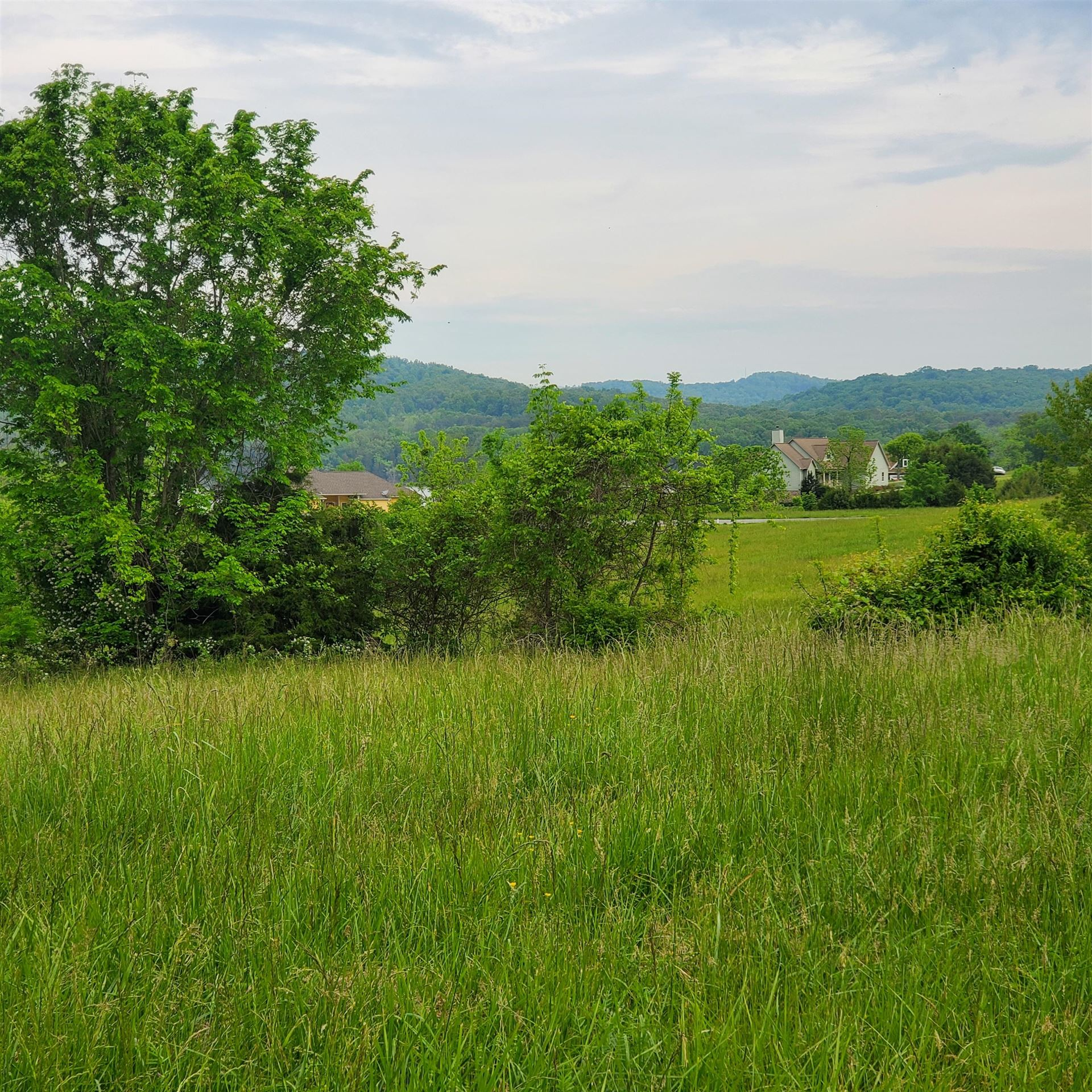 Photo of Lot 413 Russell Brothers Road, Sharps Chapel, TN 37866 (MLS # 9922760)