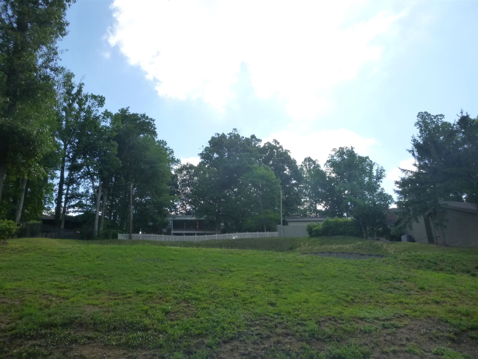 Photo of 1220 Radcliffe Avenue, Kingsport, TN 37664 (MLS # 9923761)