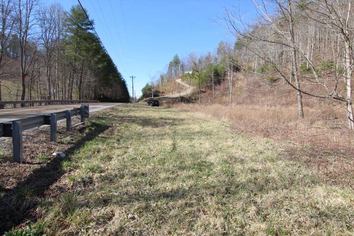 Photo of 000 Us Highway 321, Butler, TN 37640 (MLS # 9919763)