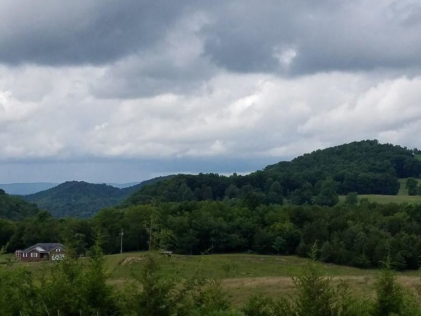 Photo of 00 Highway 131, Thorn Hill, TN 37881 (MLS # 9925768)