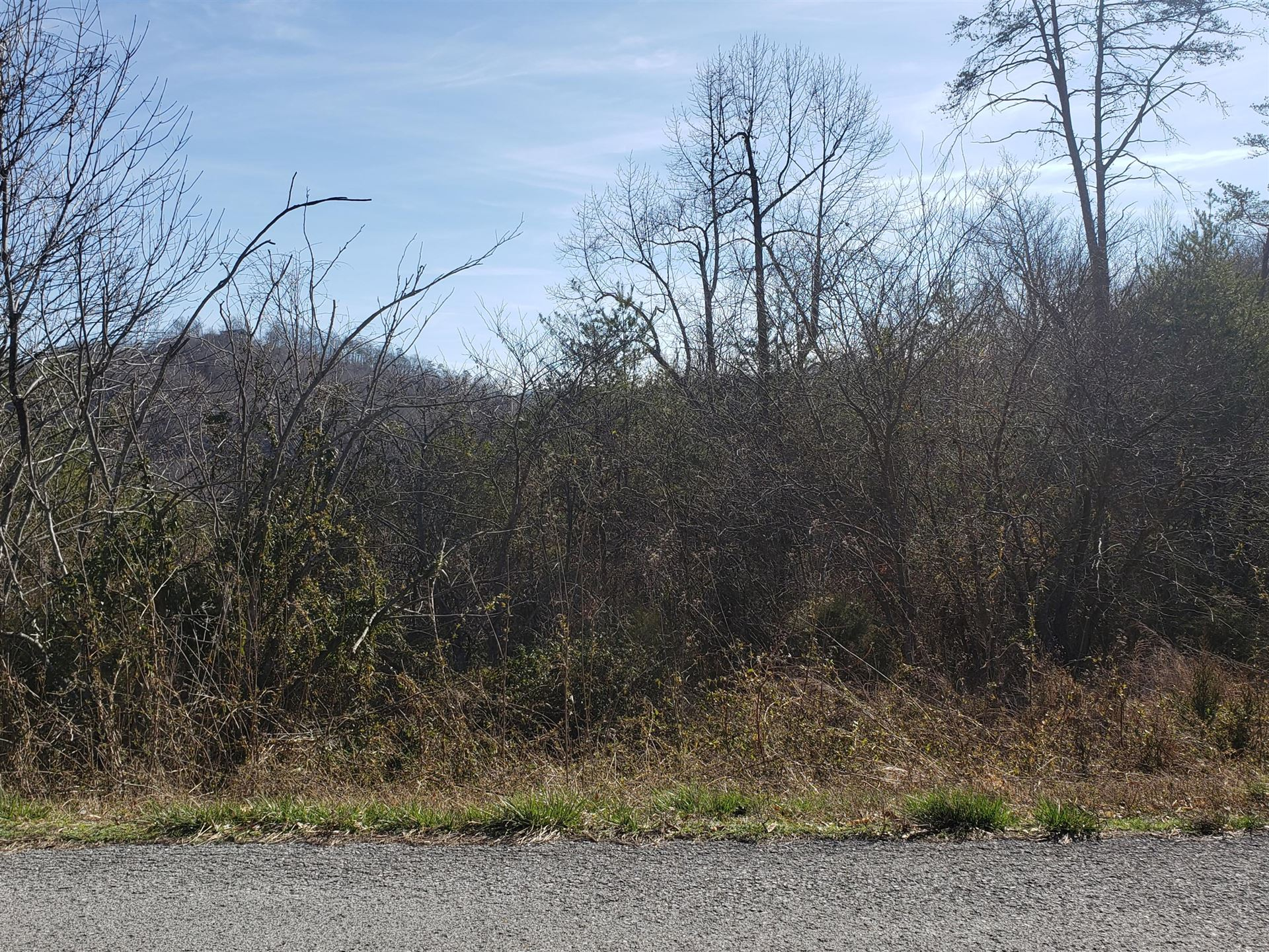 Photo of Lot 868 Clearwater Road, New Tazewell, TN 37825 (MLS # 9904770)