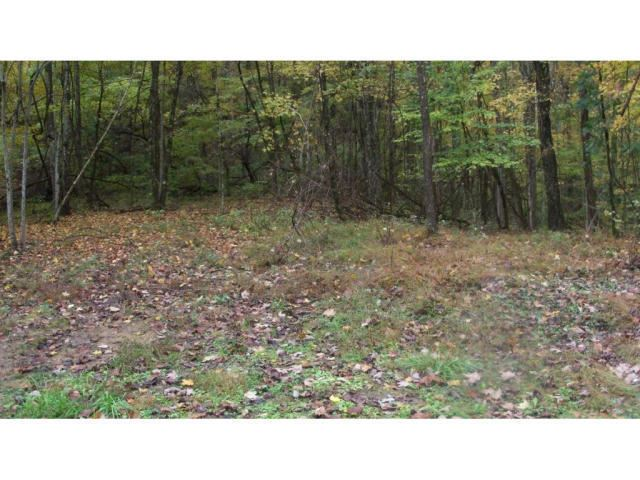 Photo of 02 TIMBERTREE BRANCH Road, Hiltons, VA 24258 (MLS # 9901775)