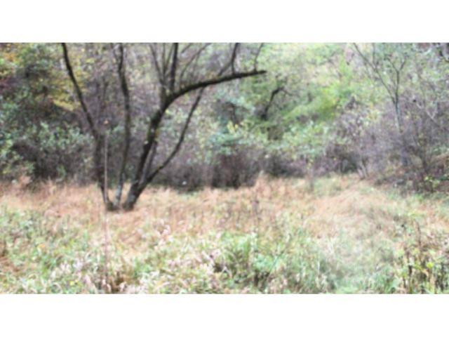 Photo of 01 TIMBER TREE BRANCH Road, Hiltons, VA 24258 (MLS # 9901778)