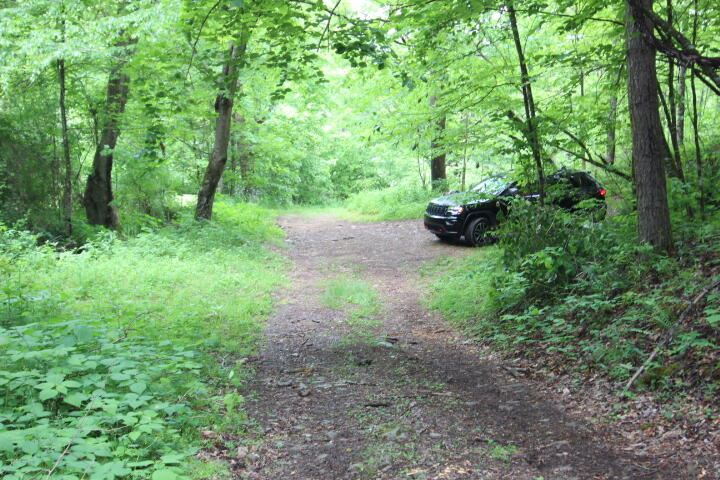 Photo for 000 Forester Hollow Lane, Mountain City, TN 37683 (MLS # 9923800)