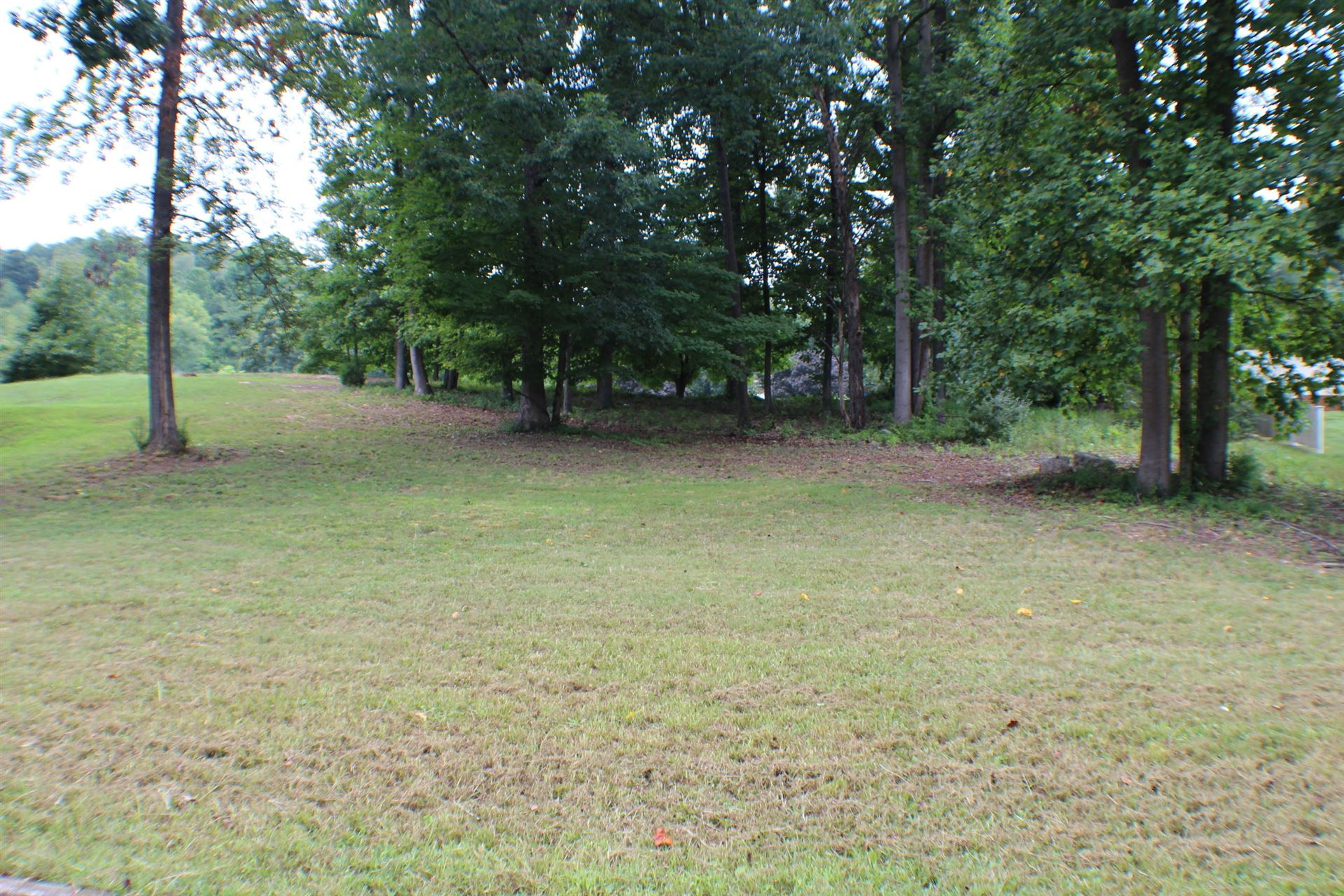 Photo of 1086 Le Amron Drive, Kingsport, TN 37665 (MLS # 9911807)