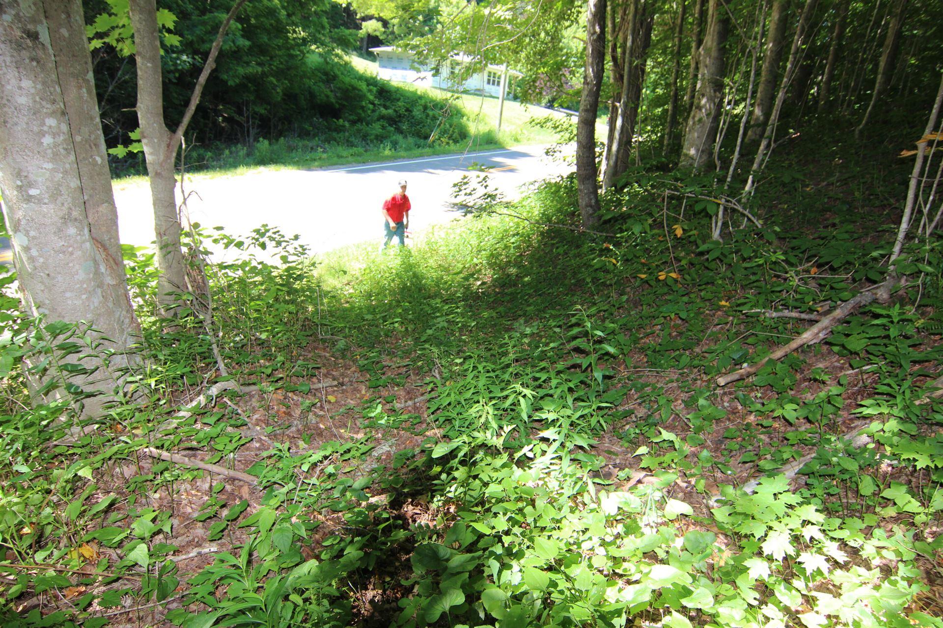 Photo of 000 Highway 67, Trade, TN 37691 (MLS # 9923811)