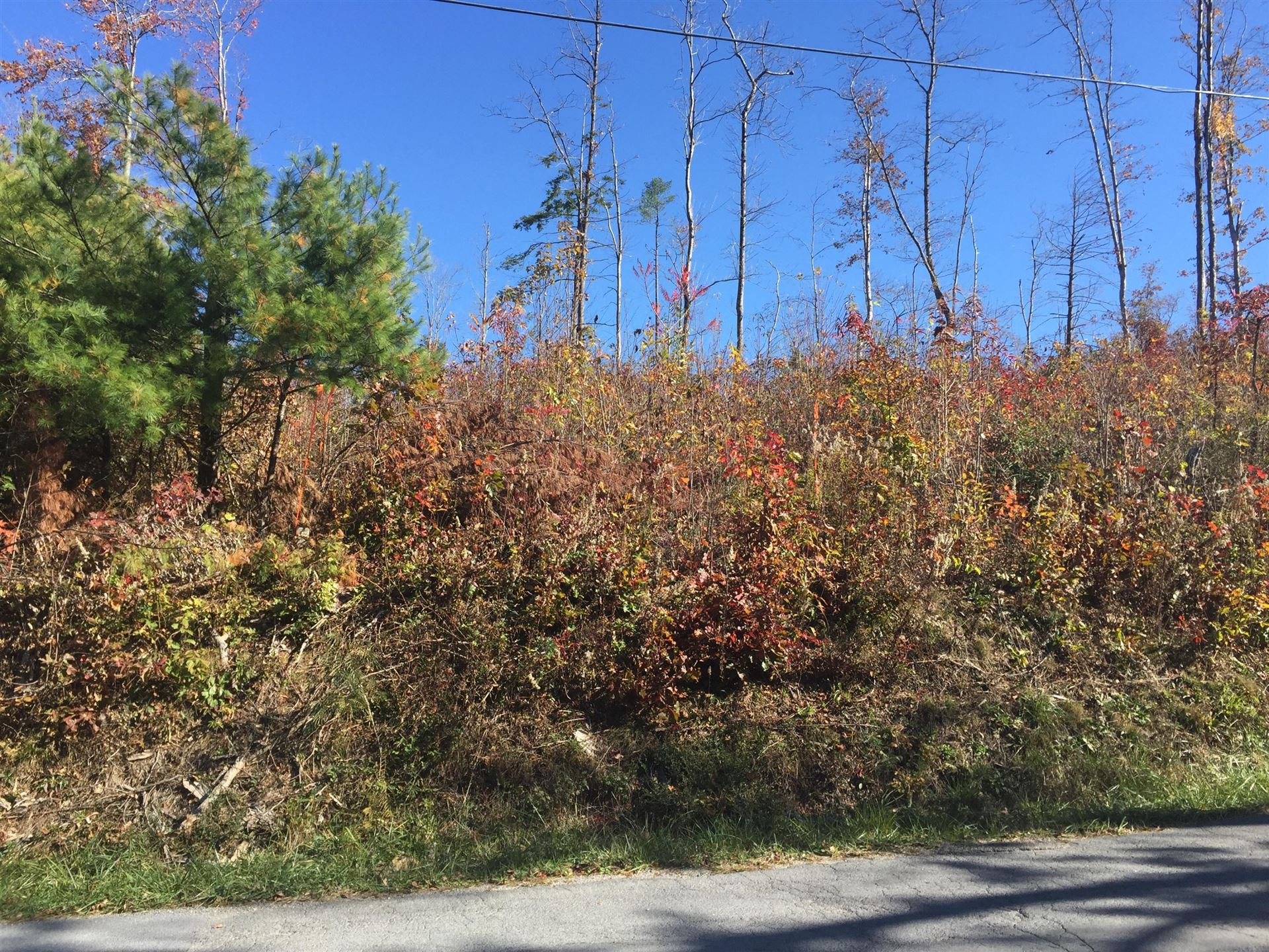 Photo of 00 Highway 67, Butler, TN 37640 (MLS # 9901820)