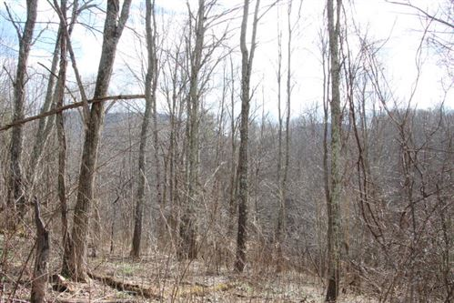 Tiny photo for 000 Of Highway 421, Trade, TN 37691 (MLS # 9917831)