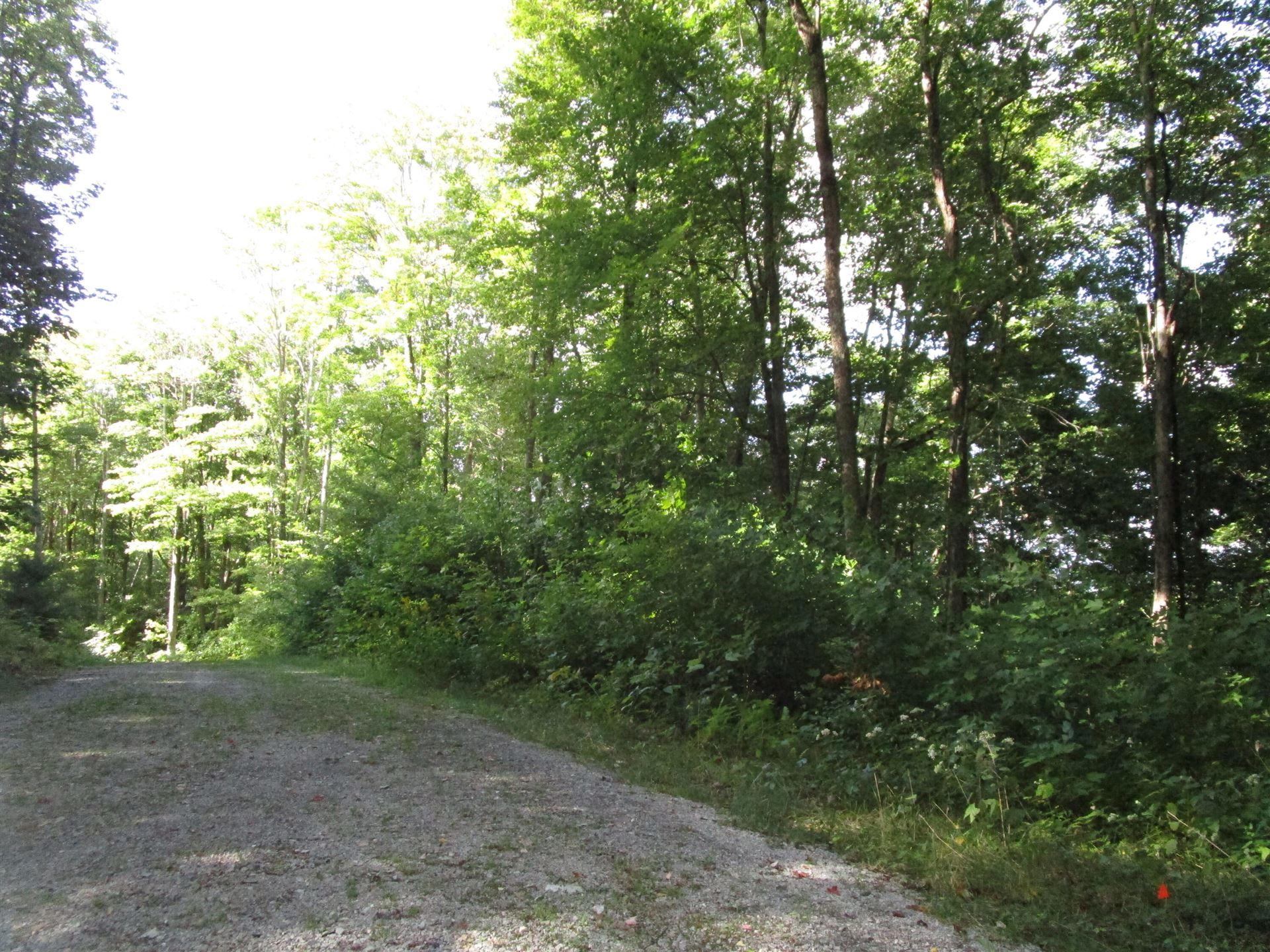 Photo of Lot 7 Wilderness Road, Unicoi, TN 37692 (MLS # 9928834)