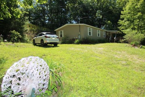 Tiny photo for 2040 Sprucey Lane, Mountain City, TN 37683 (MLS # 9923835)