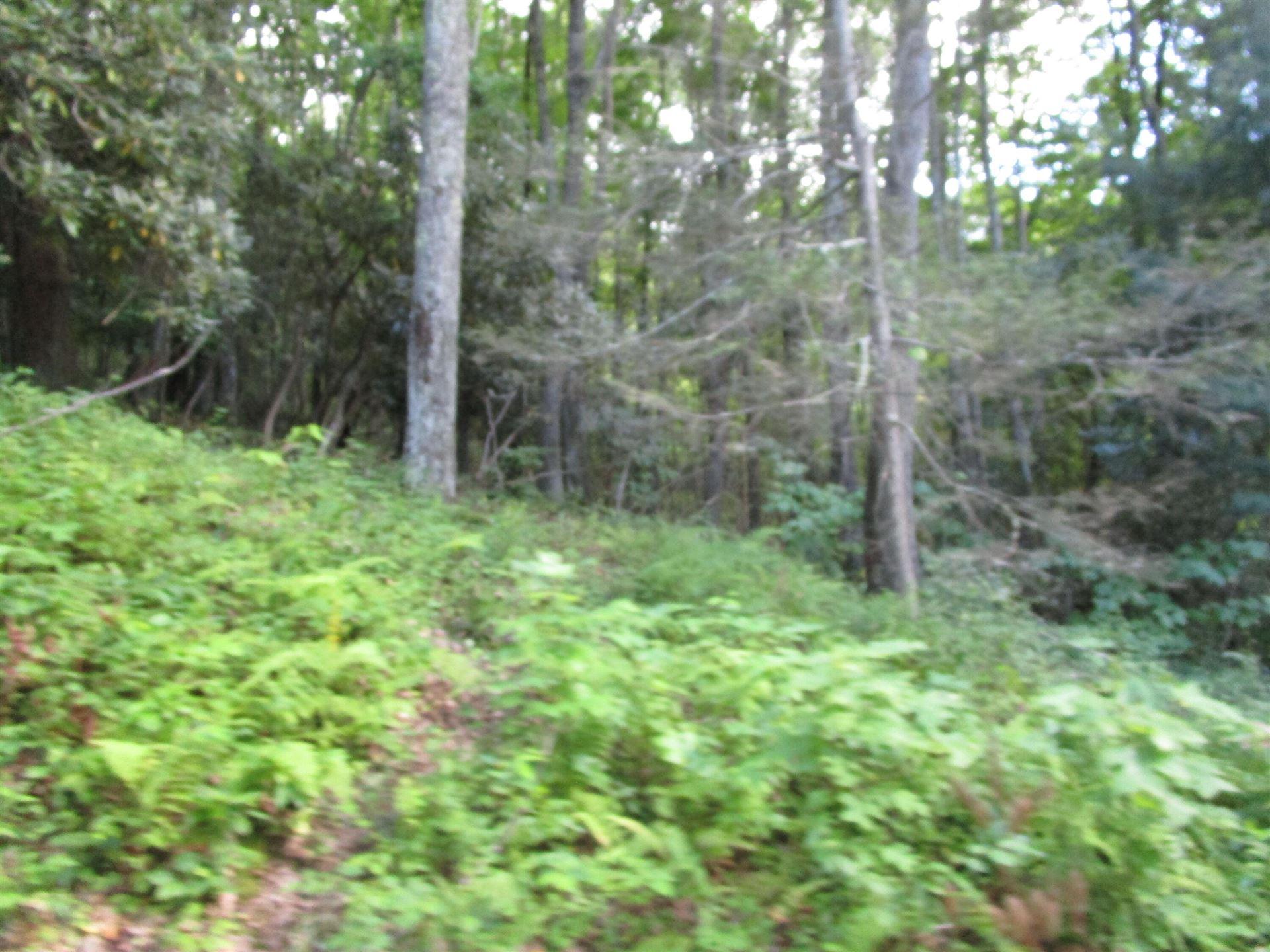 Photo of Lot 60 Wilderness Road, Unicoi, TN 37692 (MLS # 9928835)