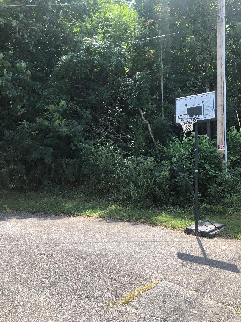 Photo of Tba Emerald Hills Drive, Elizabethton, TN 37643 (MLS # 9927843)