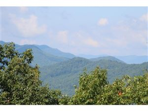 Photo of 000 CALLALANTEE, Mountain City, TN 37683 (MLS # 425845)